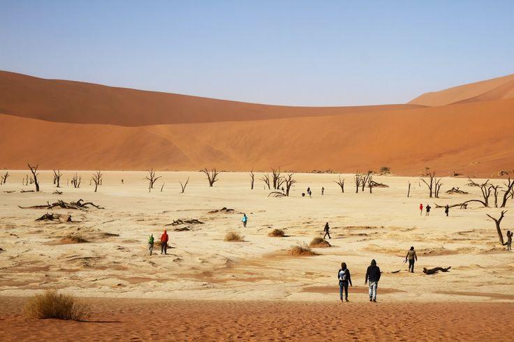 Reunimos aqui 10 lugares incríveis e deslumbrantes na Namíbia. São locais de visita obrigatória num dos países mais belos do mundo.