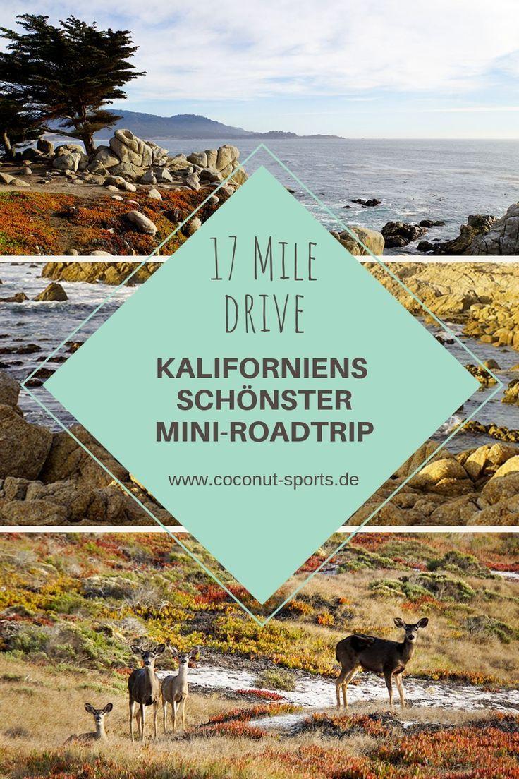 17 Mile Drive Sehenswurdigkeiten Highlights Auf Der Strasse In Monterey Usa Reise Reisen Sehenswurdigkeiten
