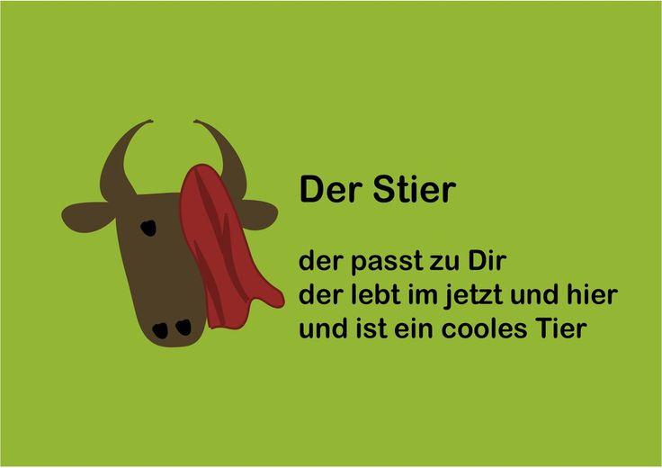 Sternzeichen Stier  mit rotem Tuch vorm Auge  Glückwunsch zum Geburtstag 21.4. - 20.5.