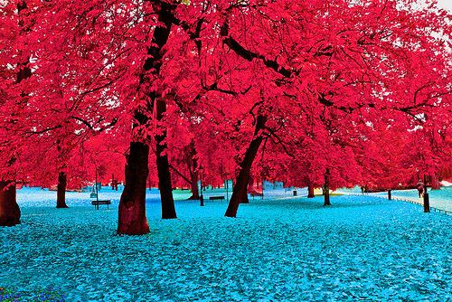 Gorgeous! #colors of the #USA