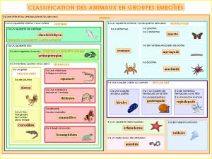 La NOUVELLE classification des animaux