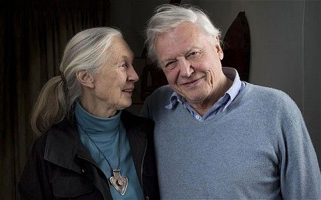 Jane Goodall and David Attenborough... such good people