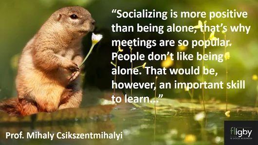 Socializing by Mihaly Csikszentmihalyi