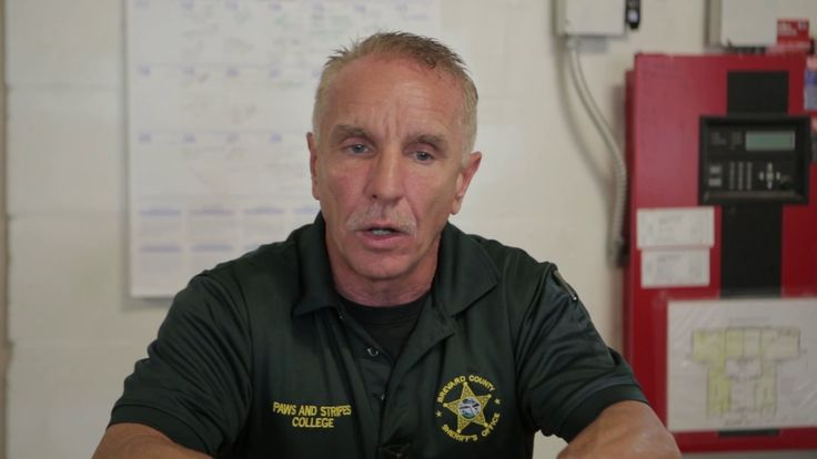 Meet the people of Paws and Stripes College, Brevard County Florida Sheriff''s Office. https://youtu.be/8pqRciuKKI0