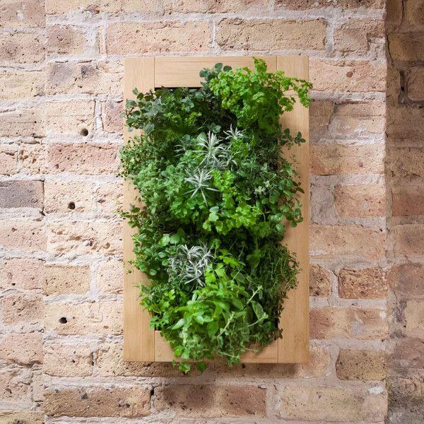 Beautiful Vertical Garden Ideas: 17 Best Ideas About Vertical Herb Gardens On Pinterest