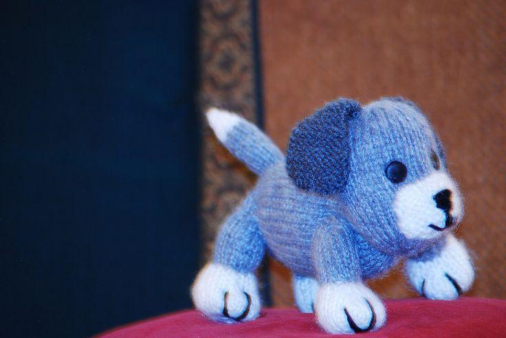 My Little Puppy - Smokey 2 DSC_6082