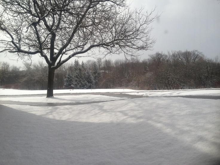 Snow outside my door