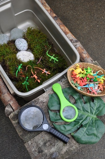 Love this combination of things from nature, toy lizards and magnifying glasses. Lots more wonderful outdoor activities in this blog post.
