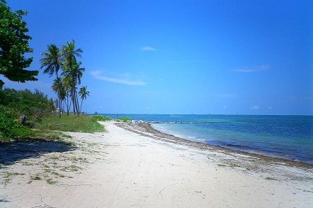 Top Beaches In Virginia - Best Beaches In Virginia & Things To Do In Virginia Beaches