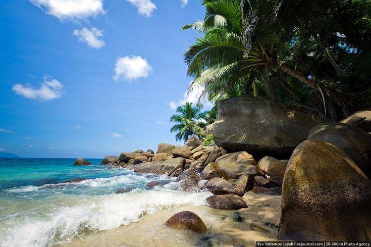 Путевые заметки. Сейшельские острова, день 12 – varlamov.ru