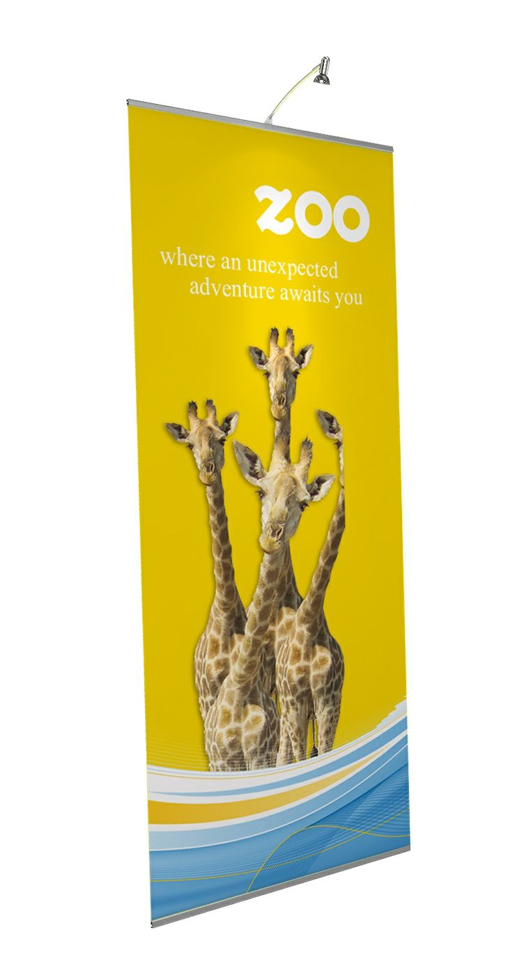 Express Stand / Pull Up Banner