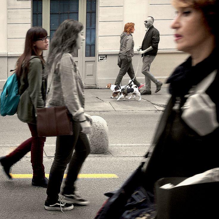 Torino, 2015.  Teatro città: tre piani, due cani, la gente va e viene. Nessuno si guarda.
