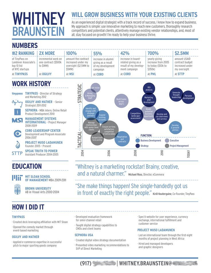 whitney braunstein digital strategist infographic cv lavoro - Digital Strategist Resume