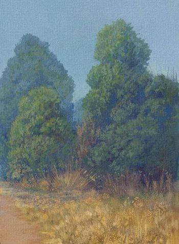 """Trees - Detail """"A Paso Manso"""" (Detalle) Copyright © 2015 by GONZALO KENNY."""