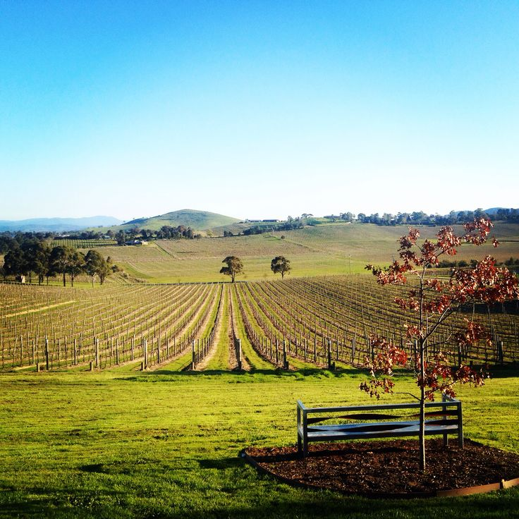 Yarra Valley winery, Victoria Australia