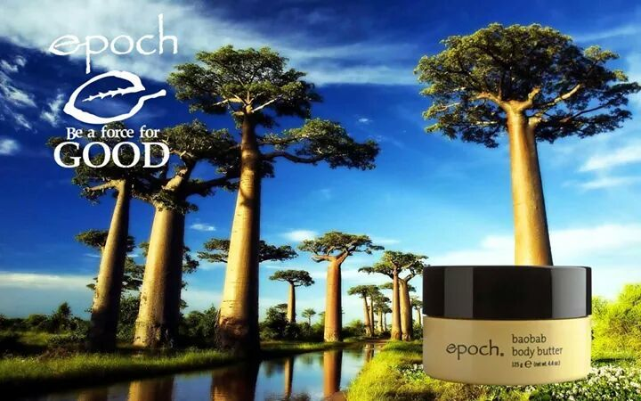 When you purchase a Baobab Body Butter a tree is planted through the Force For Good Foundation, Malawi Seeds Of Hope Project  #LiveEpoch