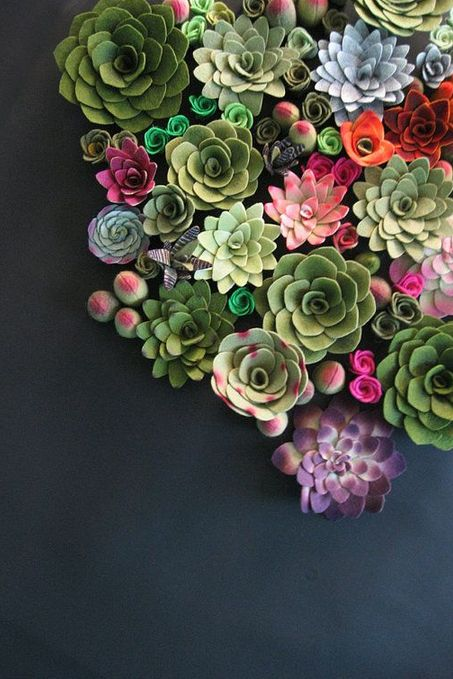 A colorful arrangement of succulents.