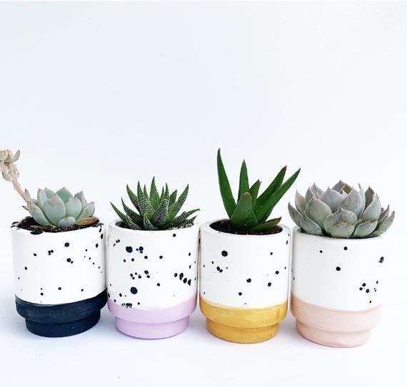 Succulents Pots In 2020 Painted Plant Pots Painted Pots Diy Ceramic Succulent Planter