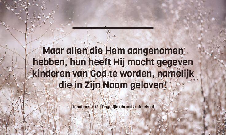 Maar allen die Hem aangenomenhebben, hun heeft Hij macht gegevenkinderen van God te worden, namelijkdie in Zijn Naam geloven! Johannes 1:12  #Geloof, #Kinderen, #Naam  http://www.dagelijksebroodkruimels.nl/johannes-1-12/