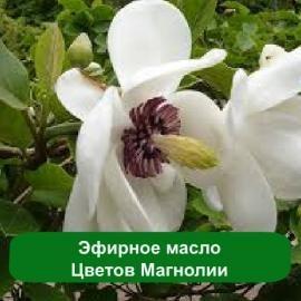Масло цветков магнолии в косметологии. Воздействие и использование масла  магнолии в средствах для кожи и волос.