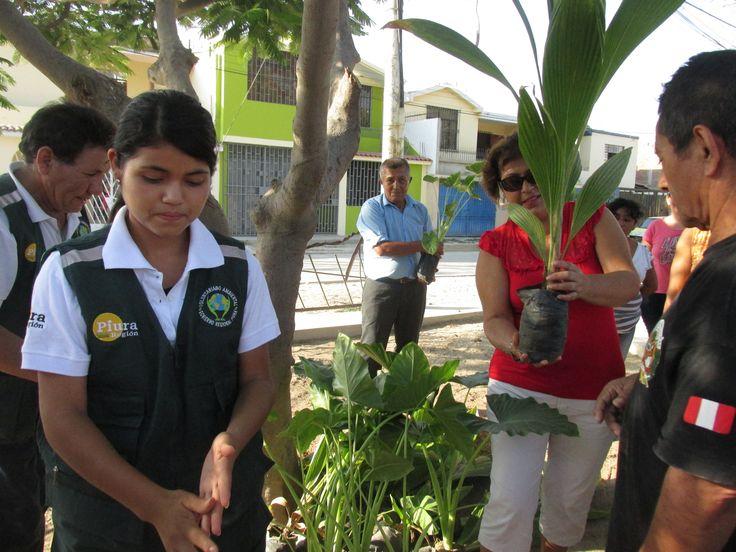 Voluntarios Ambientales - Campaña Adopta un Árbol en A.H. la Primavera