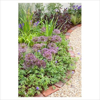 GAP Photos - Garden & Plant Picture Library - Curved border of Geranium and Allium christophii with red brick edging - GAP Photos - Specialising in horticultural photography