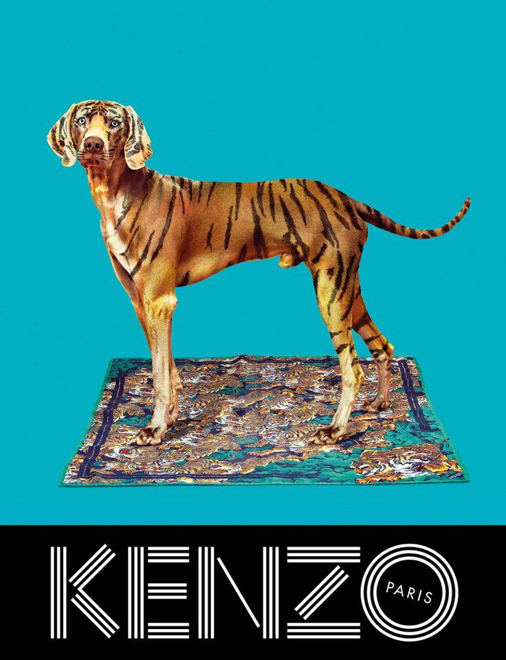 maurizio cattelan/TOILETPAPER design KENZO FW13 ad campaign