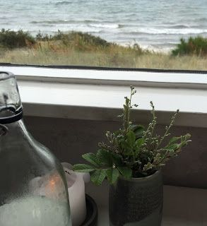 FOOD BY SKADBORG SVARE: Frokost på Restaurant Kadeau, Bornholm den 25. jul...