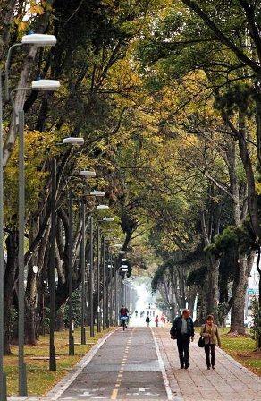 Parque -Bogotá-Colômbia.
