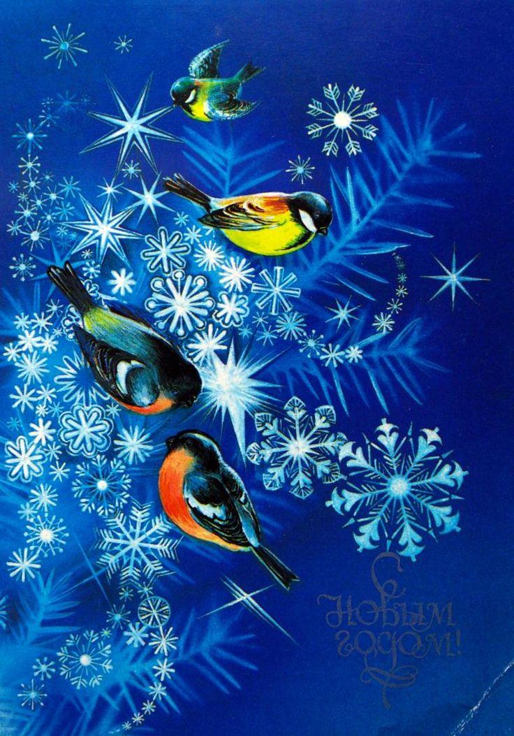 Новогодние открытки коробовой, тигр открытка