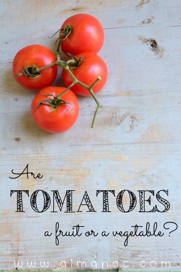 are tomatoes a fruit or vegetable is it healthy to just eat fruit