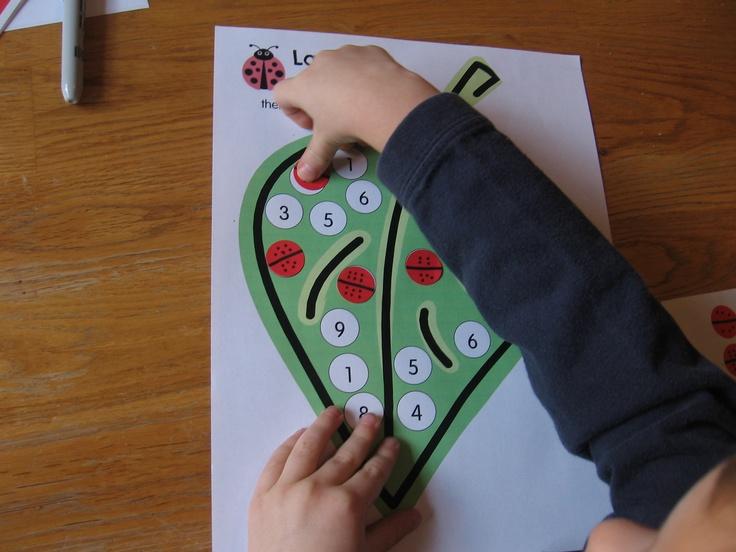 Ladybug Math for Preschool, Kindergarten & 1st Grade