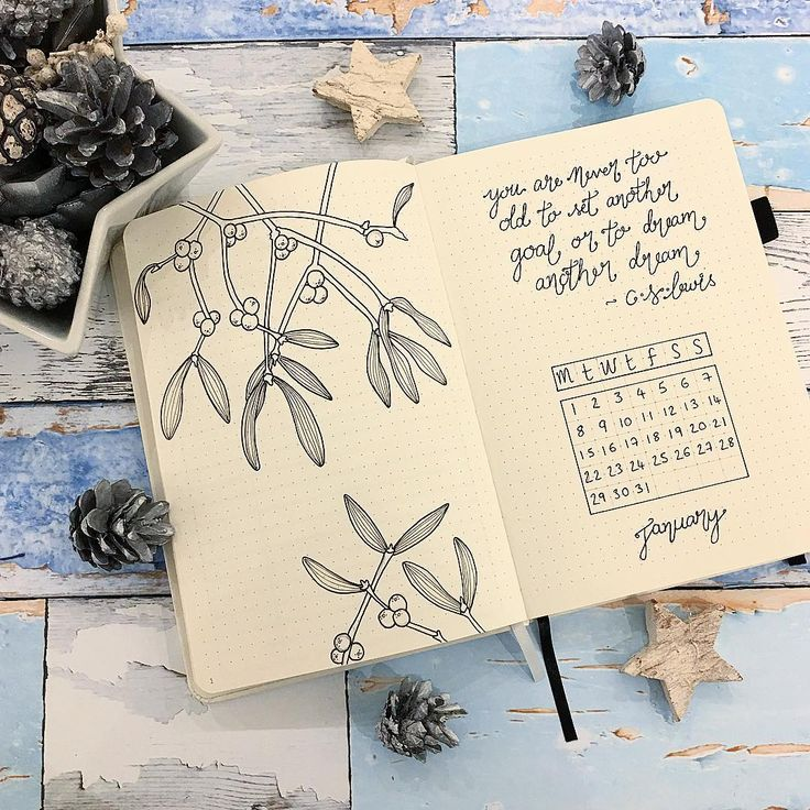 Bullet journal monthly cover page, January cover page, plant drawings. @bujobug