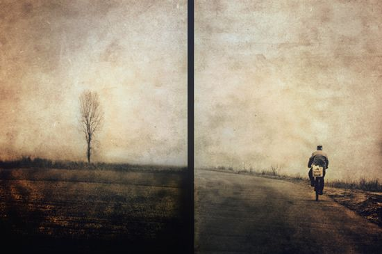 free photography textures