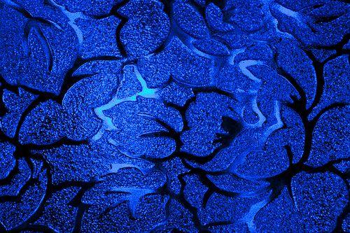 Blue by ahisgett, via Flickr
