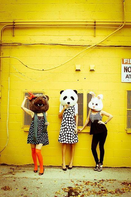 animals heads #bestphoto