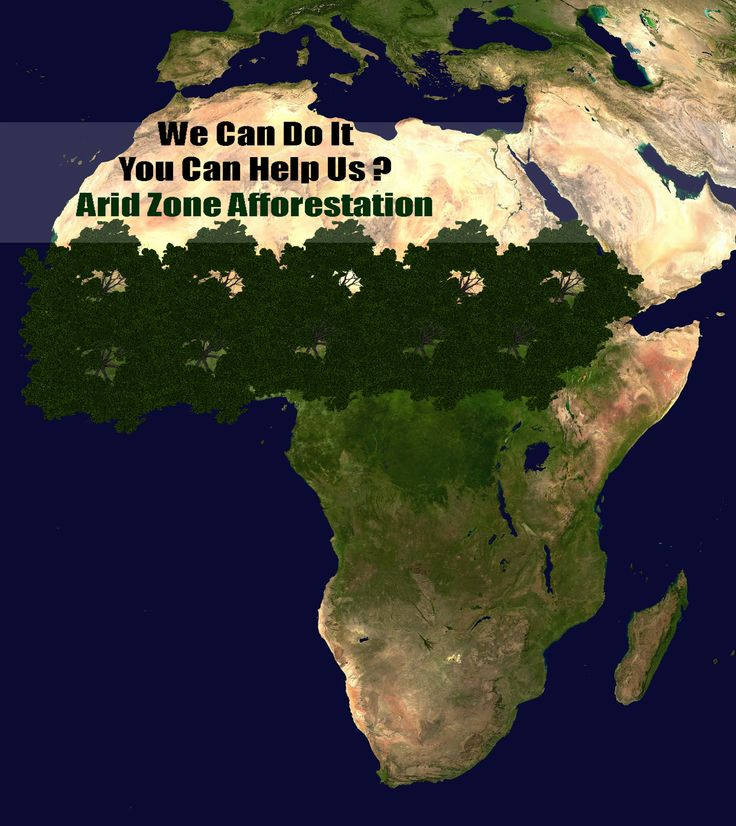According To Darwin Continent Africa Is Where Humanity Came From Www Aridzoneafforestation Continentsenvironmentafricaplant