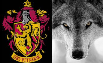 Wolf absolutely, but on the identical pottermore quiz I got Slytherin and Hufflepuff.