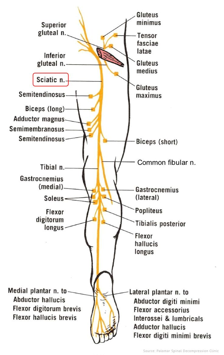 30 best Plica sydnrome of knee images on Pinterest | Pain relief ...