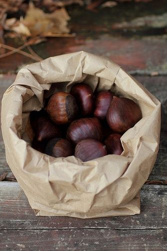 #autumn - roasted with a bit of salt or boiled with fennel, chestnuts are a must in cold days #Portugal