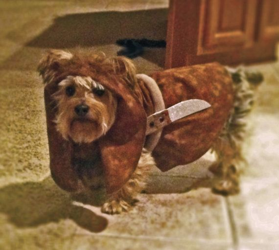 best 25 ewok dog costume ideas on pinterest funny dog. Black Bedroom Furniture Sets. Home Design Ideas