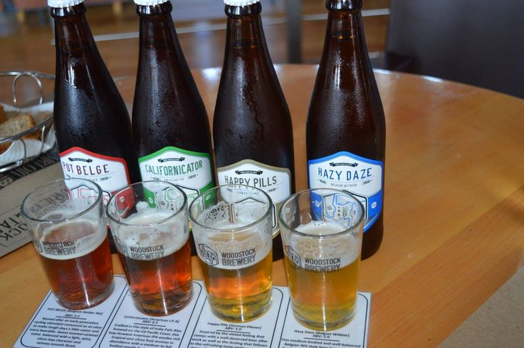 Different beers to test at Newlands Brewery