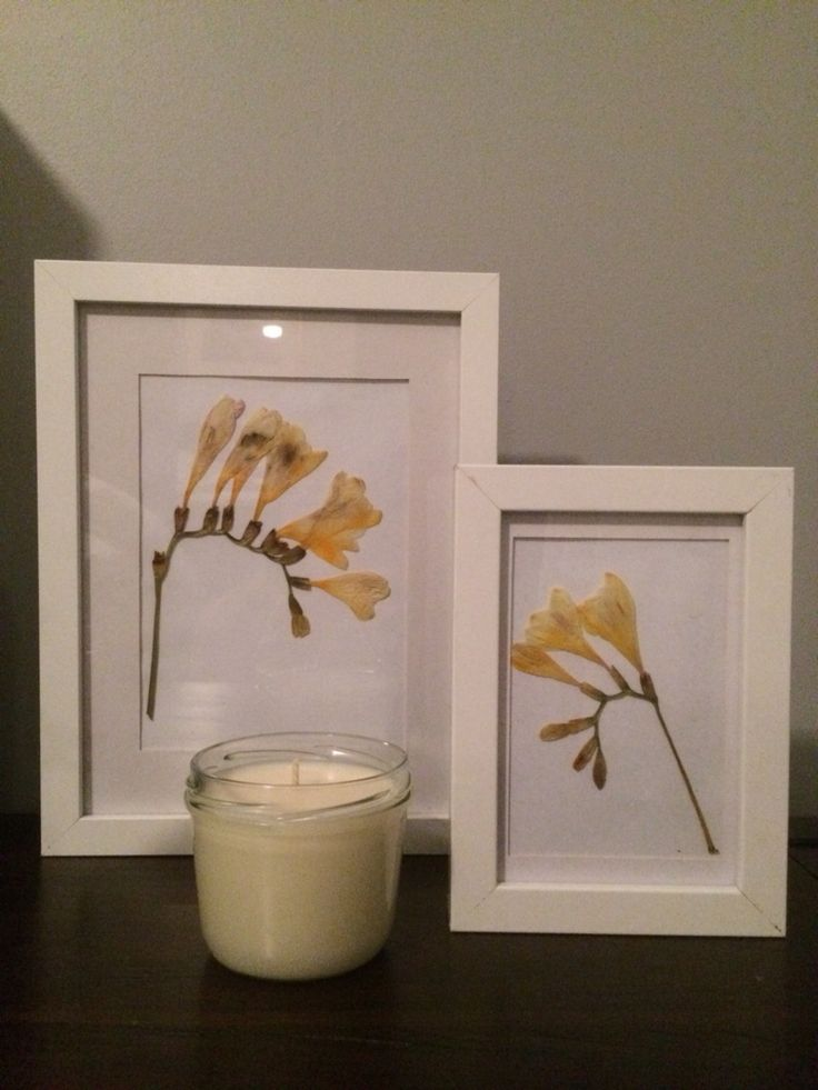 Some new creations...: pressed freesia frames