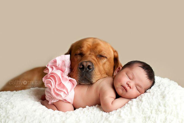 Prophotos.ru. Профессионально о фотографии - Маленькие дети и большие собаки: 44 трогательные фотографии