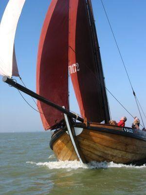 Botter . (VD172/Volendam ) De vissersboot die voornamelijk op de vroegere Zuiderzee en nu dus op het IJselmeer de paling viste . De vloot bevond zich in Volendam, Marken, Monnickendam, Muiden, Elburg, Harderwijk, Urk, Bunschoten , Spakenburg ,