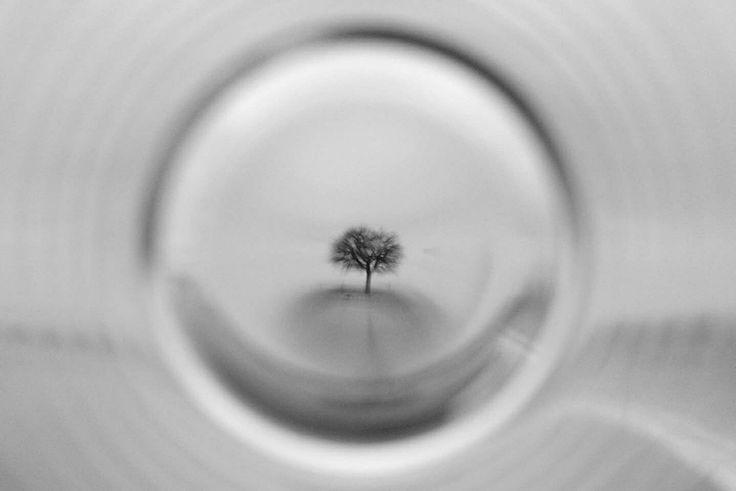 REVERSIBLE.COM Matić-Zalukar  // Providing photo/video services & selling art photography. Please contact us. reversible69@gmail.com #REVERSIBLE69 #photography #art #artphotography #artist #photographer #photo #video #art #photographysouls #nofilter #filmisnotdead #analog #analogue #noir #grain #longexposure #landscape #tree #nature