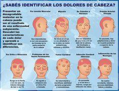 ¿Como reconocer cuando un dolor de cabeza te puede matar? Hay dolores de cabeza que no son peligrosos y por lo general se desencadenan por la tensión, el e