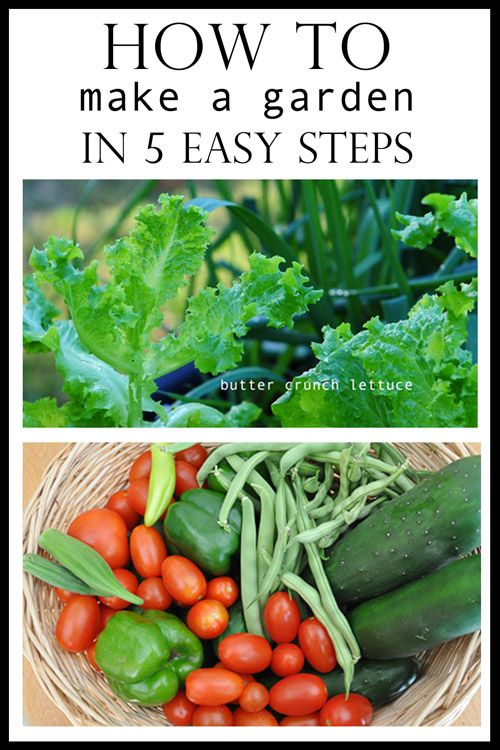 How To Make A Garden In 5 Easy Steps - Raised Urban Gardens - great beginner's guide that explains how you can have a garden in a small space.