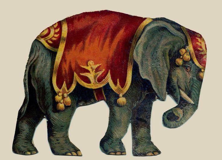Vintage elephant illustration • night under the big top ... Vintage Elephant Illustration