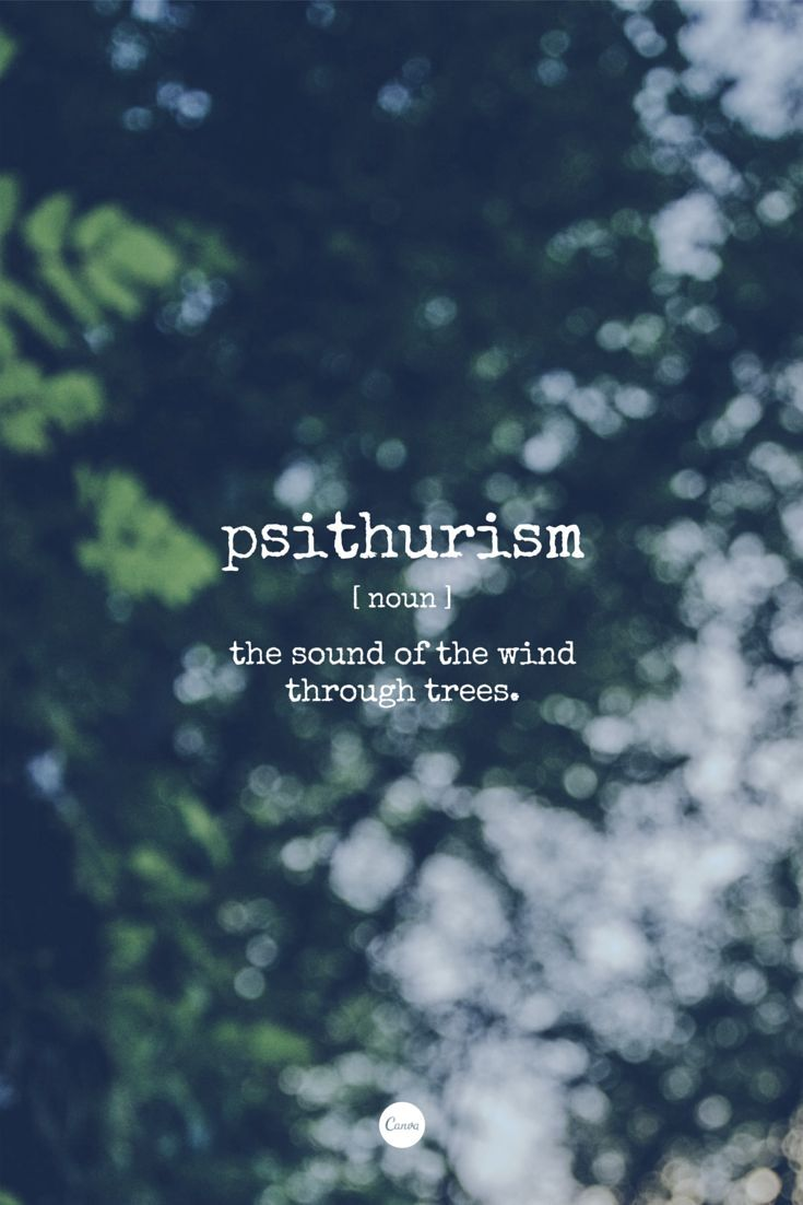Word of the Day: Psithurism. The sound of the wind through trees. #inspiration…